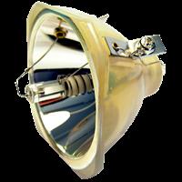 3M Lumina X62 Lamp without module