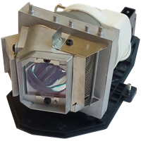 ACER HE-711J Lamp with housing