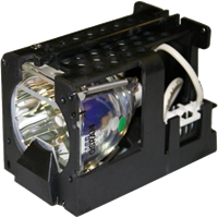 ADVENT ADV 800 Lamp with housing
