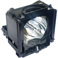 AKAI PT50DL24 Lamp with housing