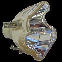 ANTHEM LTX 500 Lamp without housing