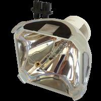 AV PLUS MVP-X13 Lamp without housing