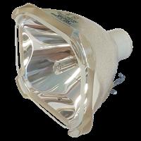 FUJITSU LPF-P726 Lamp without housing