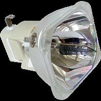 PLANAR PR6020 Lamp without housing