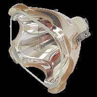 PREMIER LP-930 Lamp without housing