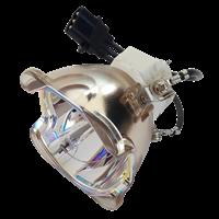 SANYO PDG-DXL2500 Lamp without housing