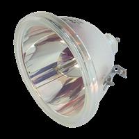 SANYO PLC-XP10CA Lamp without housing
