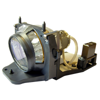 TA 300 Lamp with housing