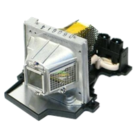 TOSHIBA TDP-S8J Lamp with housing