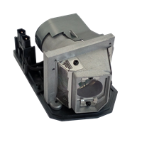 TOSHIBA TDP-SP1J Lamp with housing