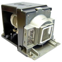 TOSHIBA TDP-T100J Lamp with housing