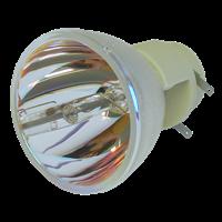 VIVITEK D557WH Lamp without module